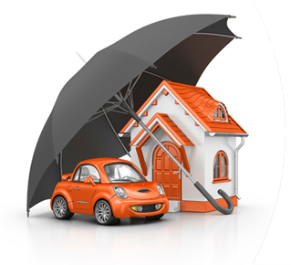 New Port Richey, FL Homeowners Insurance